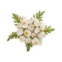 Bouquet de 18 mini camélias