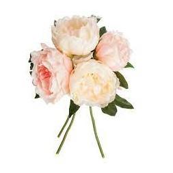 Bouquet de 4 pivoines roses