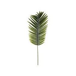 Tige palmier