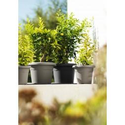 Pot à fleurs anthracite Ø26cm