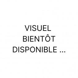 Faïence Azulejos Manuel Burdeos Brillo (0.50m²/bte) 1er choix