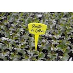 Etiquette à planter jaune