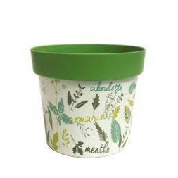 Pot Caméléon vert