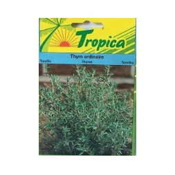 Plant Thym Ordinaire 0.5 G