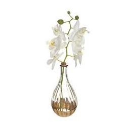 Vase orchidées Edi