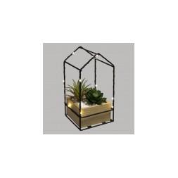 Box plante à led