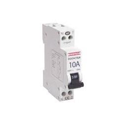Disjoncteur P+N 10A blanc - DEBFLEX