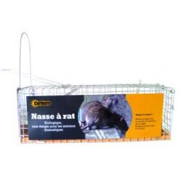 Nasse Rat 1 Entrée