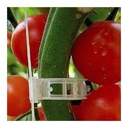 Clip spécial tomate rouge  12 pièces